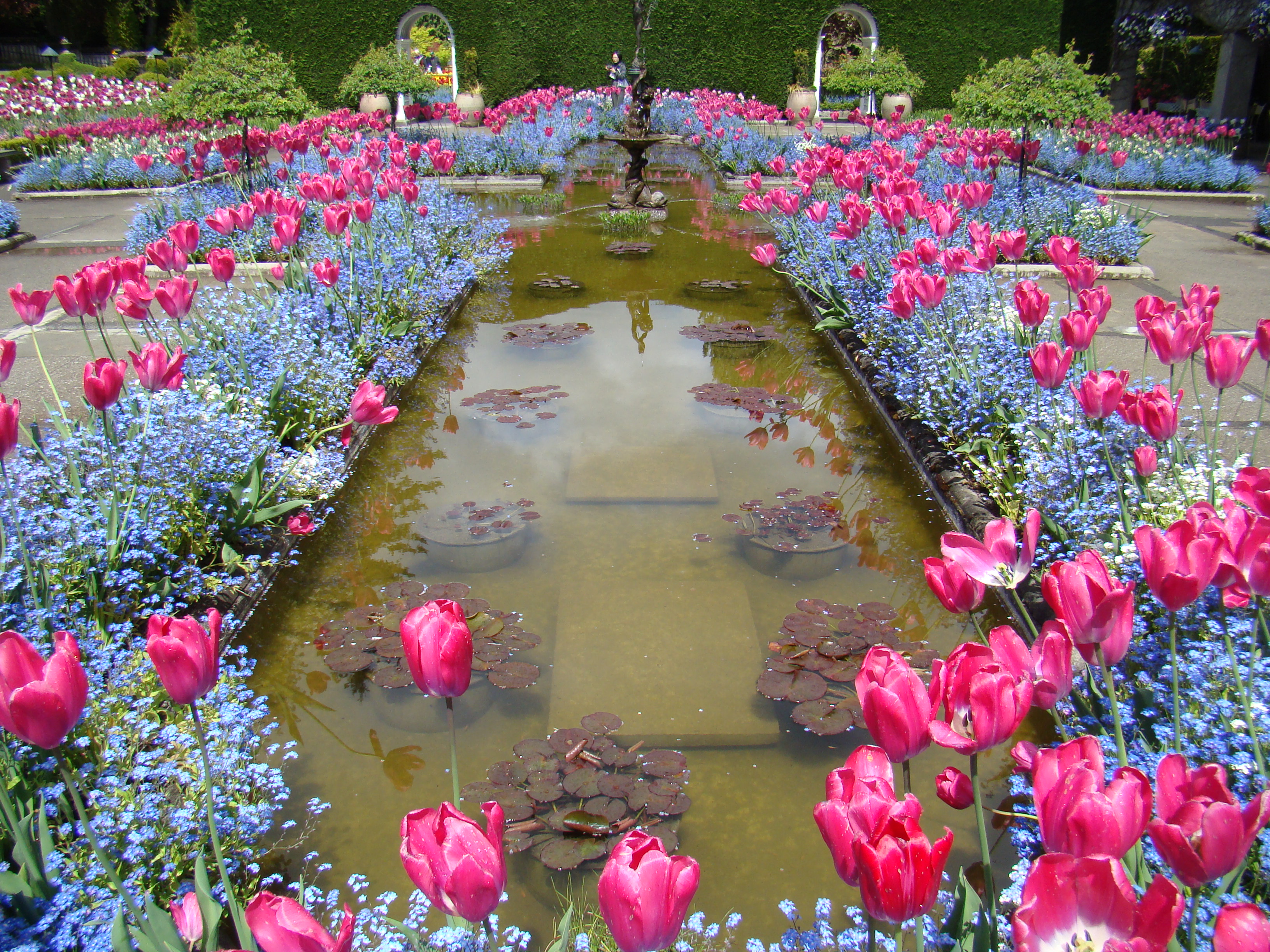 3 attractions around vancouver kim okran isc main - Best time to visit butchart gardens ...
